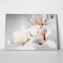 Fantastic gentle abstract monochrome magnolia blossoms 206069857 a