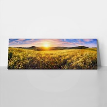 Colorful sunset on beautiful meadow 285605333 a