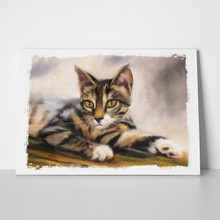 Tabby kitten oil painting 255303508 a