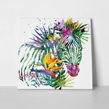 Zebra exotic tropical watercolor 406549471 a
