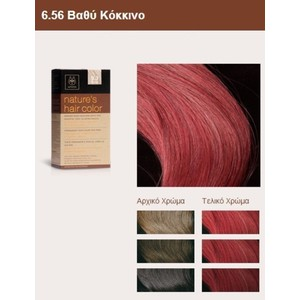 Apivita nature s hair color 6.56