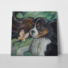 Dog with butterfly  kingcharles  697718227 a