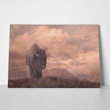 Buffalo painting on wyoming 3271948 a