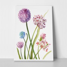 Hand painted purple alliums 740814025 a