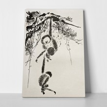 Monkeys among branches ink 95964463 a