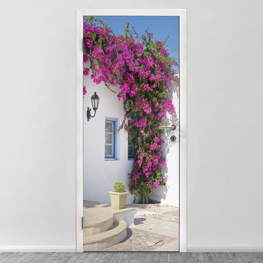 Bougainvillea window