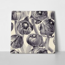 Floral pattern buttercup buds black white 641236741 a