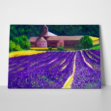 Lavender farm country side 66719392 a