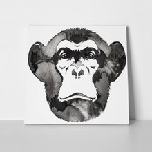 Monkey monochrome painting 790076812 a