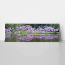 Redbud reflections 141277012 a