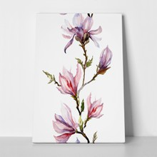 Pink magnolias on twig 695799640 a