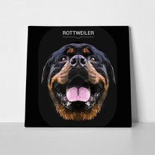 Rottweiler dog animal low poly 666949804 a