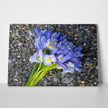 Bouquet of violet irises 788173903 a