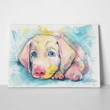 Lying puppy on blue background 217195675 a