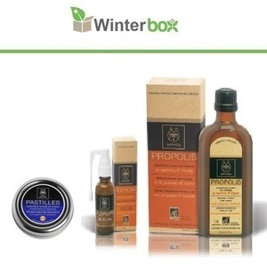 Winter box last