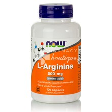 Now L-Arginine 500 mg, 100caps
