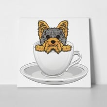 Yorkshire terrier inside cup 695537182 a