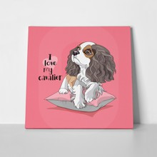 I love cavalier king charles spaniel dog 551303941 a