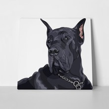 Great dane sketch close portrait 136666571 a