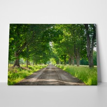 Road through country side 575297095 a