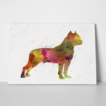 American pitbull watercolor 338034353 a