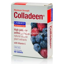 Lamberts Colladeen Double Strength 160mg - Υγεία Δέρματος, 60tabs