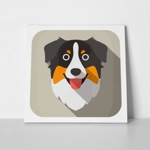 Australian shepherd dog face 654200410 01 a