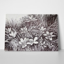 Floral landscape pencil drawing 180833864 a