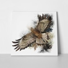 Falcon flight watercolor painting 718925698 a