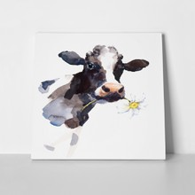 Watercolor cow daisy flower 714638377 a