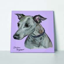 Greyhound portrait on purple 694931089 a