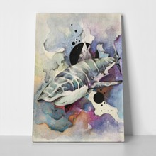 Watercolour painting shark 1049534306 a