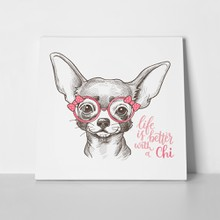 Girl chihuahua illustration dog 489556339 a