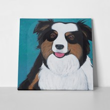 Dog australian shepherd painting 72300772 a