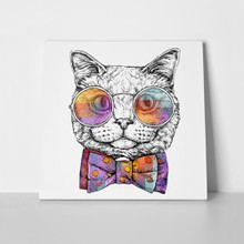 Cat portrait in glasses 662621437 a