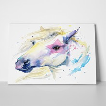 White horse illustration splash 308674832 a