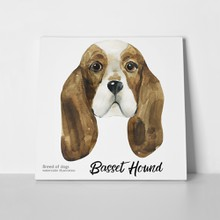 Portrait cute dog basset hound 701762512 a