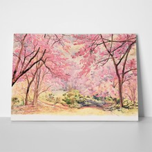 Painting watercolor landscape pink red flower 708366718 a