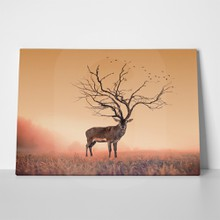 Deer stag dry tree 417005296 a