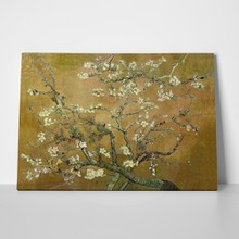 Almond blossom yellow