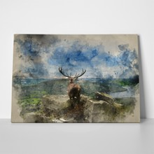 Painting beautiful red deer 632637683 a