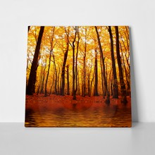 Lake in autumn forest 95830162 a