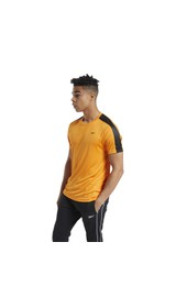 Reebok Men Workout Ready Tech Tee (FU3246)