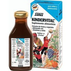 Power Health Floradix Kindervital 250ml