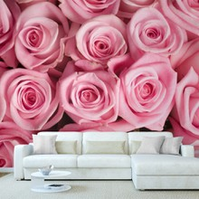 Pink roses a