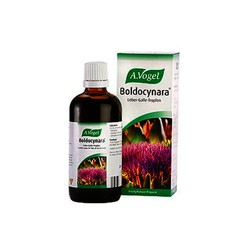 A. Vogel Boldocynara 50ml