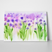 Purple wild flowers a