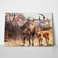 Family beautiful deer 235561294 a