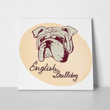 English bulldog hand drawn dog portrait 474864940 a