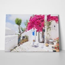 Traditional greek street flowers amorgos island 433118353 a